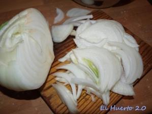 Picando  nuestra cebolla blanca
