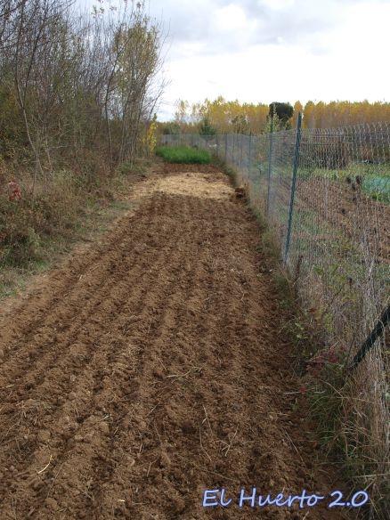 Terreno a comienzos de noviembre, recién sembrado