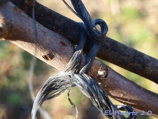Rama atada con cuerda de plástico