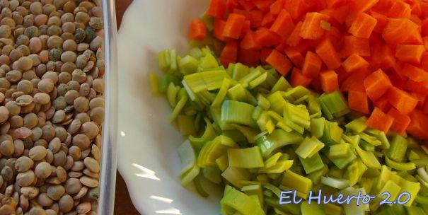 Ingredientes de este plato de lentejas