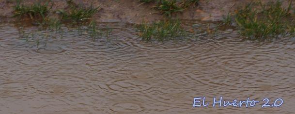 Lluvia en los charcos
