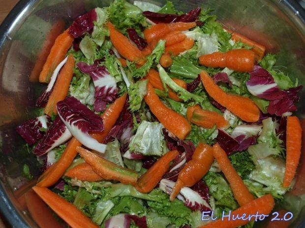 Zanahorias baby en ensalada