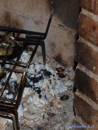 Ceniza en la chimenea de casa