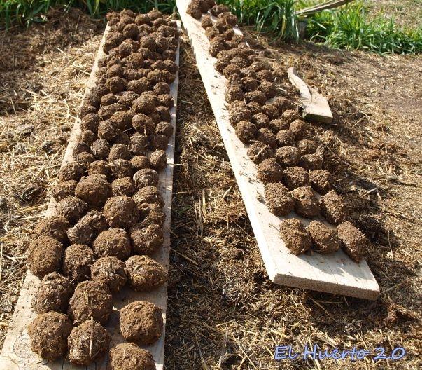 Bolas de tierra y humus