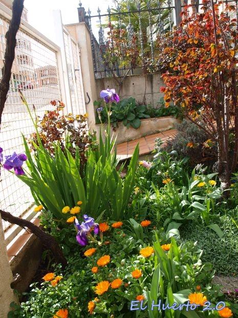 Mi jardin urbano el huerto 2 0 for El jardin urbano