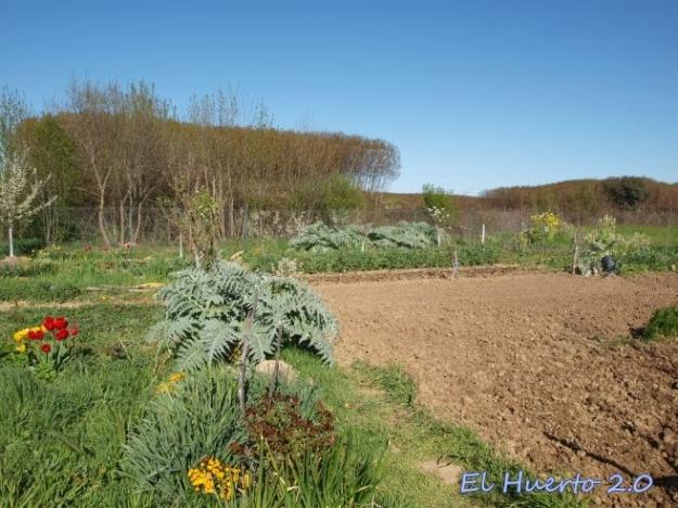 Tierra e hierba