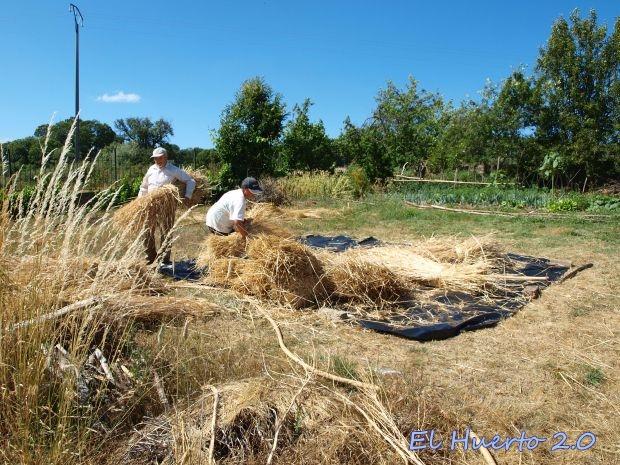 Amontonando la paja sin grano