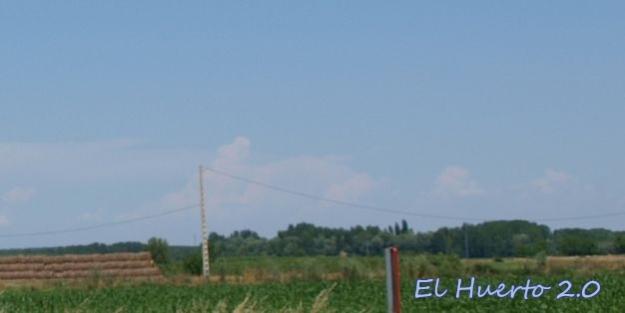 Nubes de desarrollo vertical formándose desde mediodía