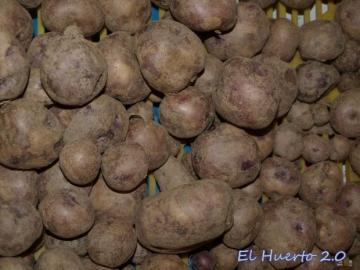 Patatas  de piel amoratada