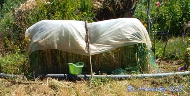 Con redes y manta