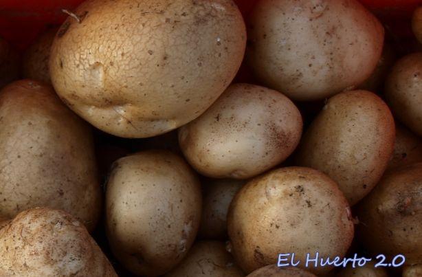 Patatas de la paja