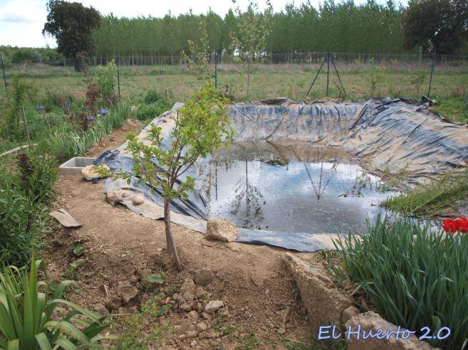 Renovaci n del estanque ii el vaciado el huerto 2 0 for Estanques de jardin prefabricados