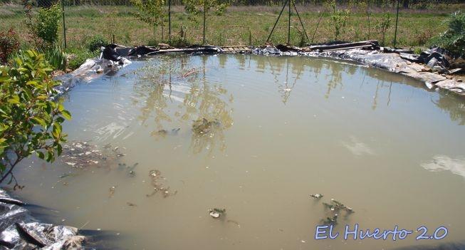 Renovaci n del estanque iii llenado el huerto 2 0 for Hule para estanque