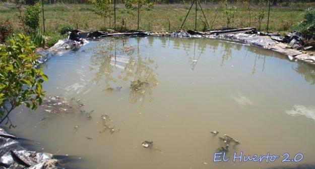 Imagen final del estanque lleno