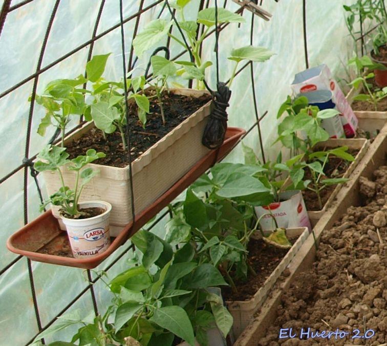 colocando jardineras colgantes
