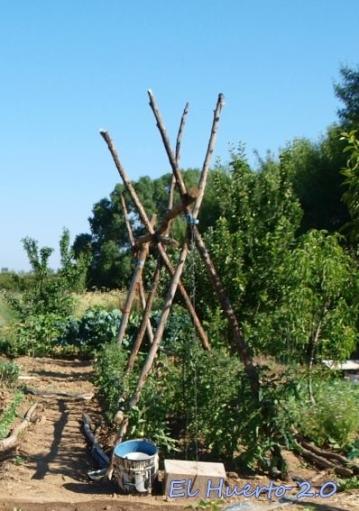 Barraca para los tomates