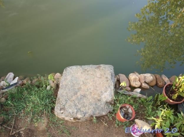 Zona de carga de agua y acceso al estanque
