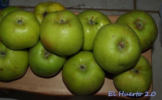 Secándose las manzanas