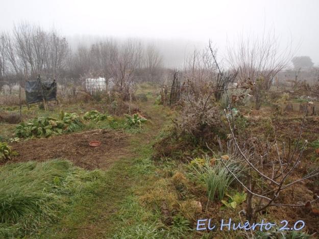 Vista del huerto 2.1
