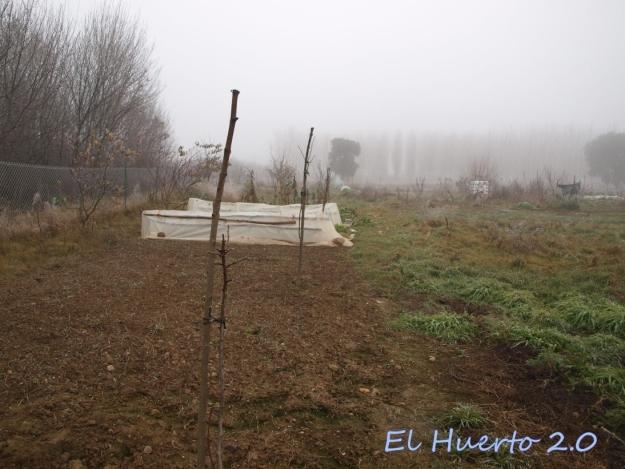 Vista del huerto 2.11