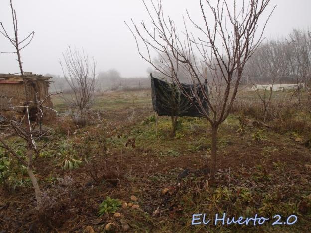 Vista del huerto 2.3