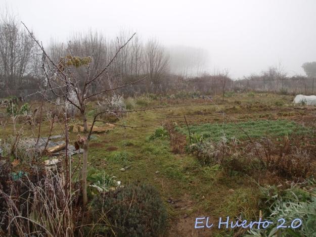 Vista del huerto 2.4