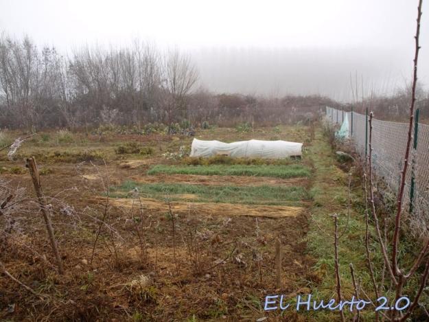Vista del huerto 2.6
