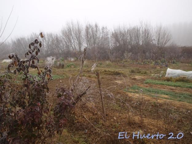 Vista del huerto 2.7