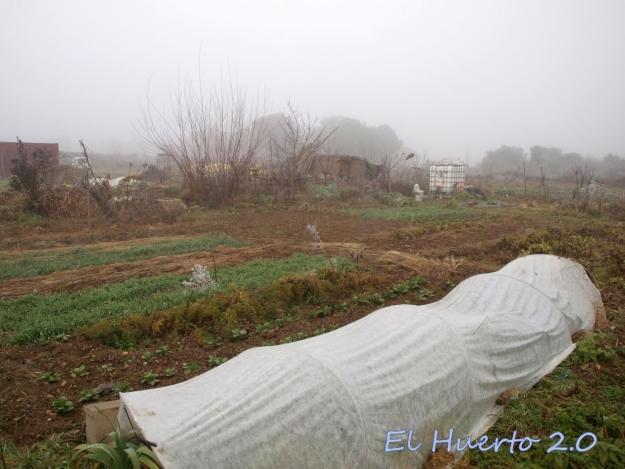 Vista del huerto 2.8