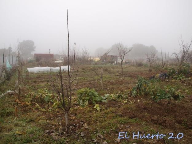 Vista del huerto 2.9