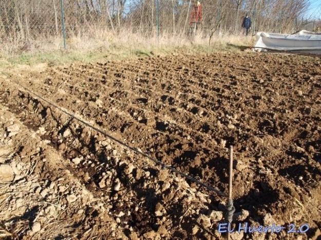 Tendiendo la cuerda para cavar derecho el suco