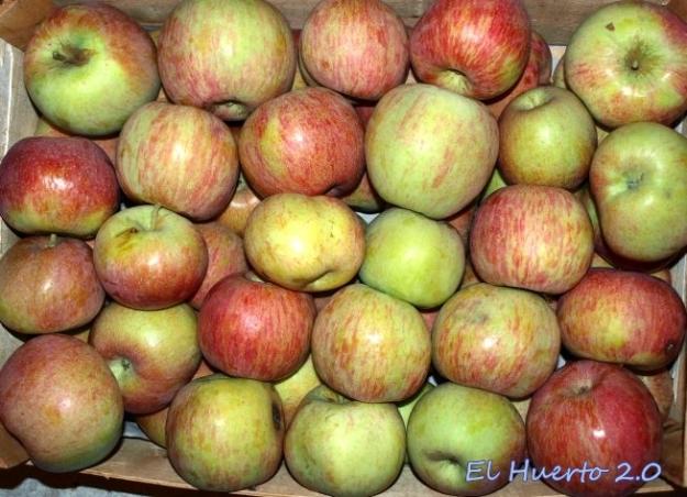 Caja y media de manzanas Fuji