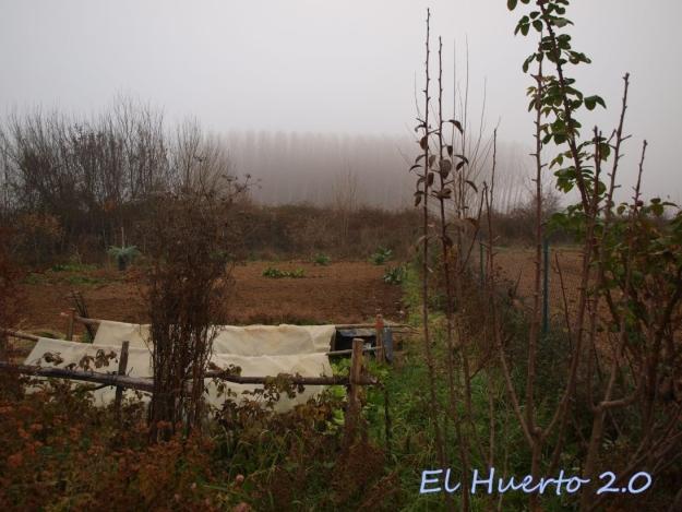 Mirada al huerto 49.5