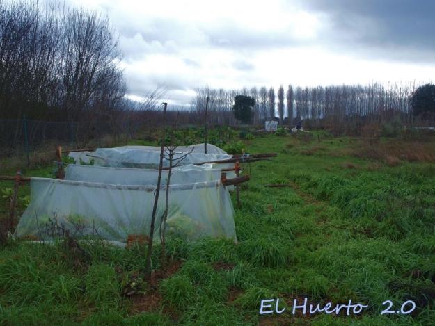 Vista del huerto 2.12
