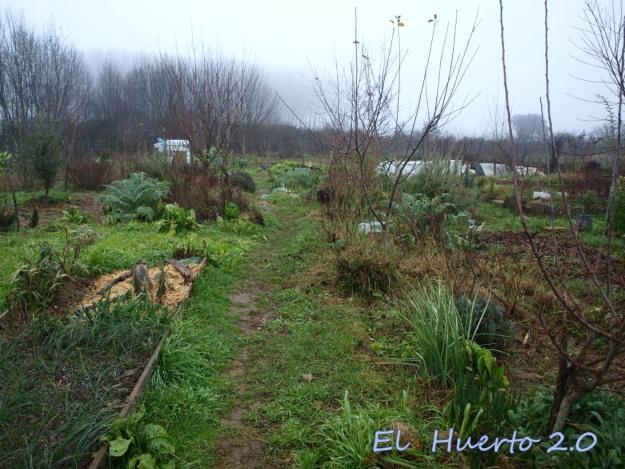 Vista del huerto 4.1