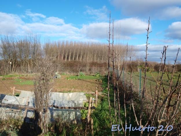 Vista del huerto 5.5
