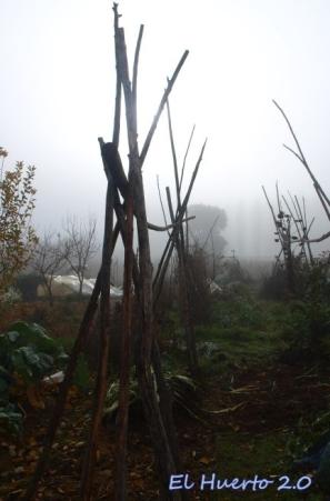 Palos entre la niebla