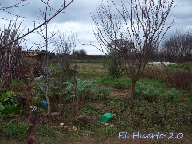 Vista del huerto 6.2