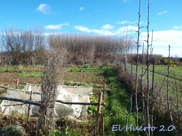 Vista del huerto 7.4