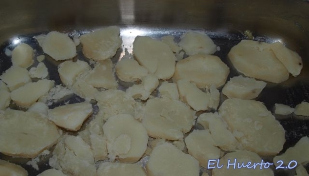 Rodajas de patata de base