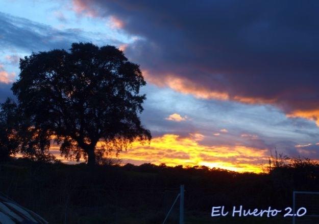 Esplendor de la puesta de sol