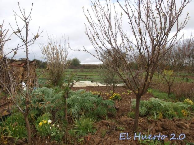 Vista del huerto 16.2