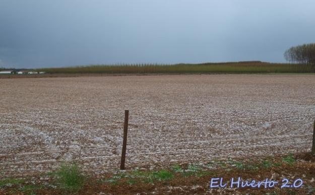 Campo cercano blanco por el granizo