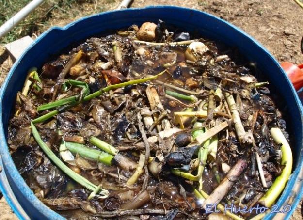 Bidón con el extracto fermentado de cebollas y ajos